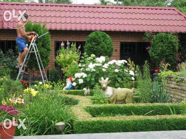 Озеленение участка, садовник, ландшафтный дизайн, обрезка деревьев