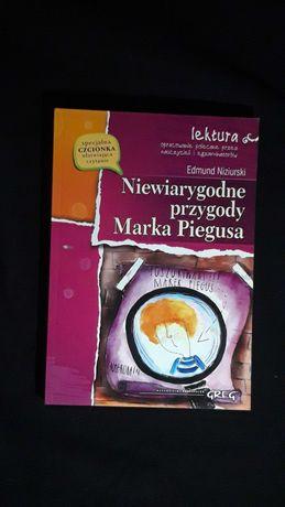 Niewiarygodne przygody marka piegusa, książka.