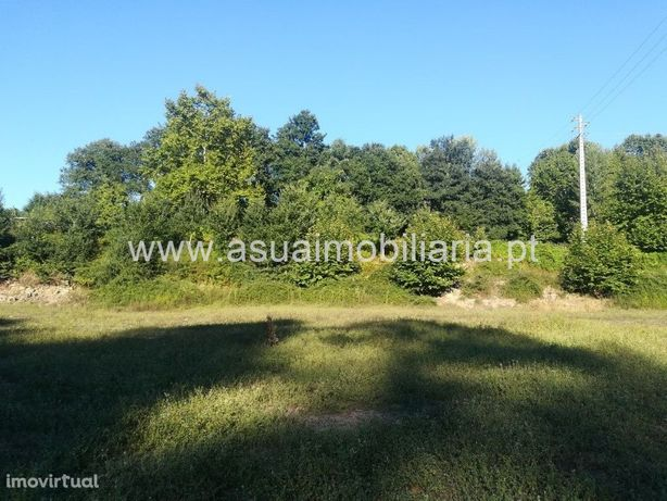 Terreno Agrícola e Bouça - Torre