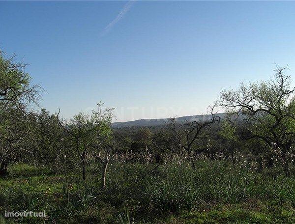 Terreno Rustico, com 57.870 m2 situado em Alte, Loulé