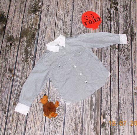 Нарядная рубашка Rebel для мальчика 2-3 года, 92-98 см