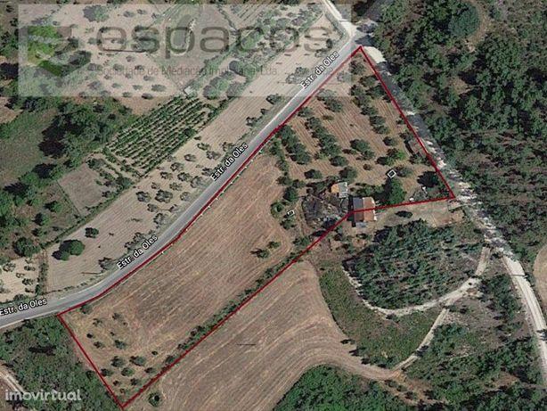 Quinta, Louriçal do Campo, Castelo Branco