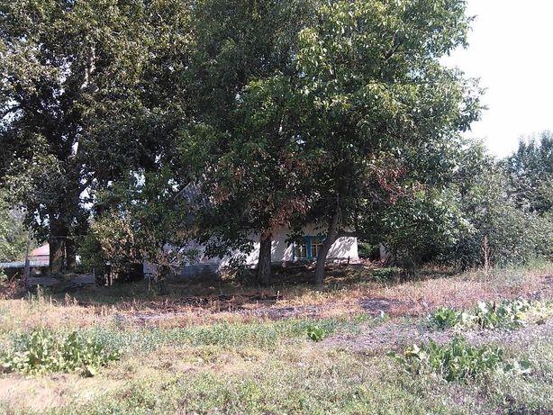 Земельный участок в с. Новая Басань