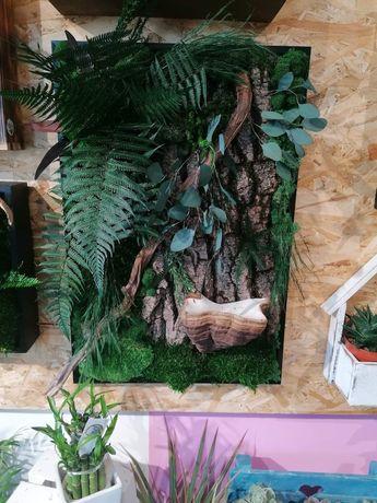 Obraz z roślin stabilizowanych/mech