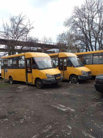 Продам автобусы Газель Рута 25d