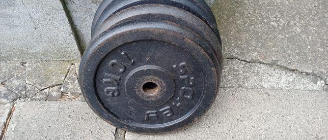 Obciążenie żeliwne SPOKEY fi 29 2x10 kg