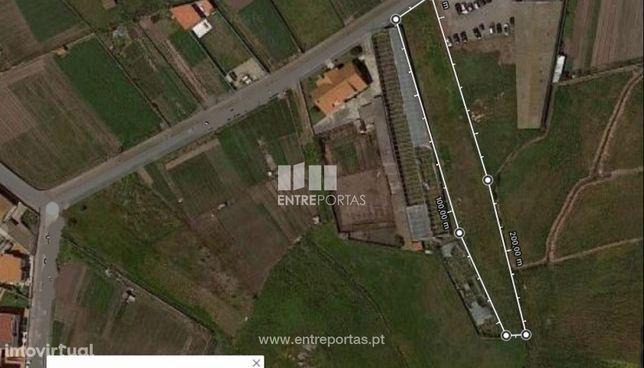 Venda de Terreno agrícola com 1800m2, Aver-o-mar, Póvoa de Varzim