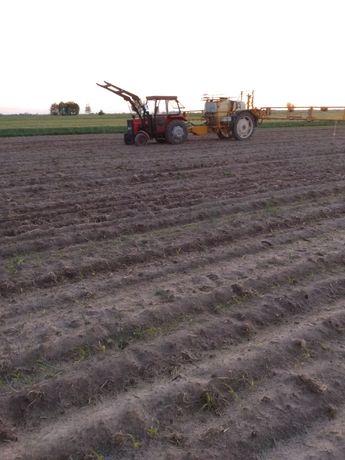 Dzierżawa gruntów rolnych