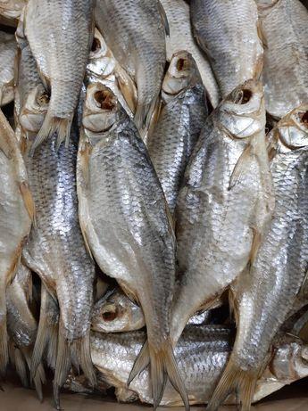 Рыба вяленая.Вяленая рыба.