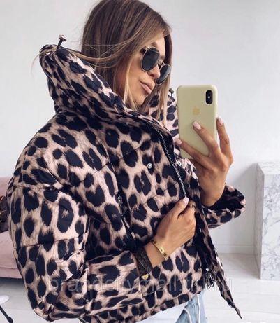 Леопардовая брендовая куртка дутик на молнии