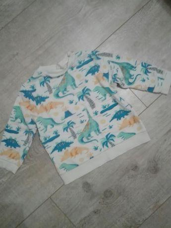 Bluza zara dinozaury 104 chłopięca
