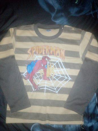 Koszulka disney 116 bluzka spider man marvel