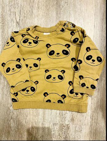Bluza niemowlęca panda H&M 74, chłopięca
