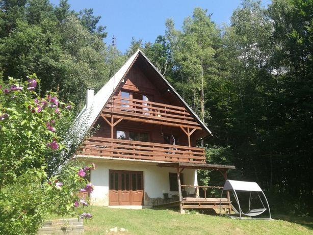 Domek w lesie wynajmę - 160 m !