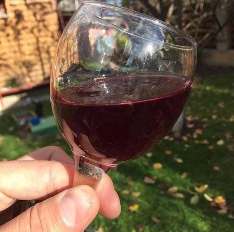 ВиноГрад домашне