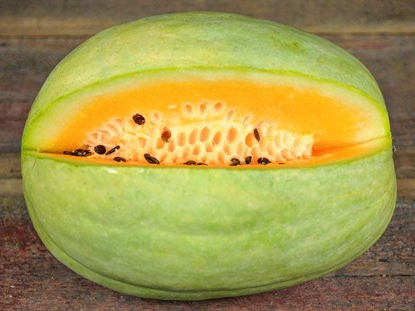 Arbuz królewski Deser King nasiona arbuzów melonów orange pomarańczowy