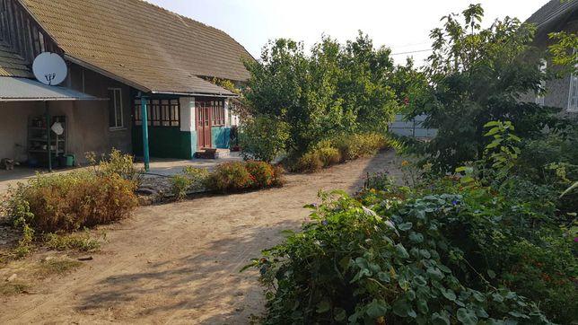 Продам дом в селе Кулевча