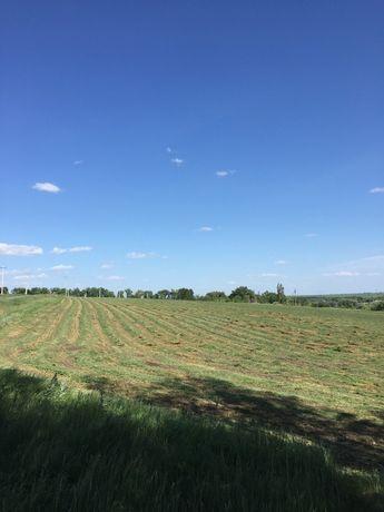 Продам в Рогани 9 и 2 гектара земли ОСГ.Харьков в 5 километрах.