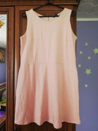 Sukienka bawełniana nowa esmara rozm M