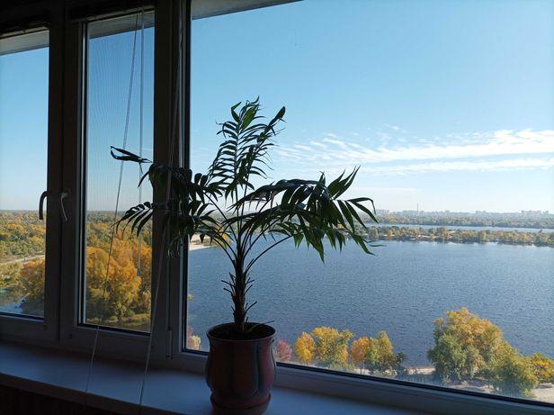Шикарная квартира с видом на Днепр, Оболонь