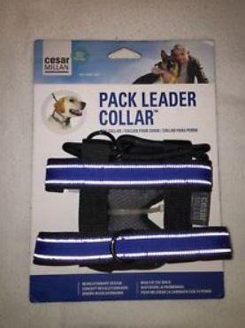 obroża Cesar Millan Pack Leader Collar rozm. M