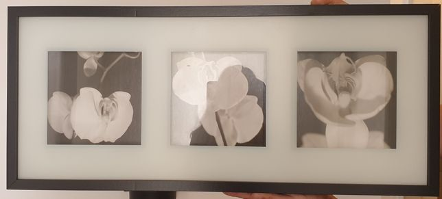 Quadro Ikea flores