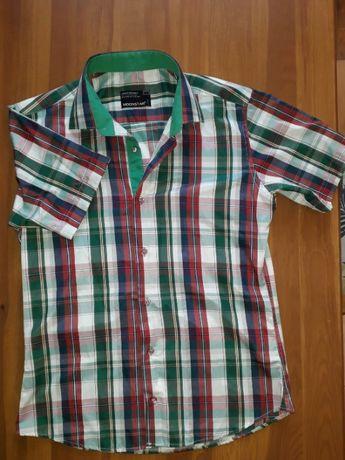 Koszula męska w kratkę na krótki rękaw r. L