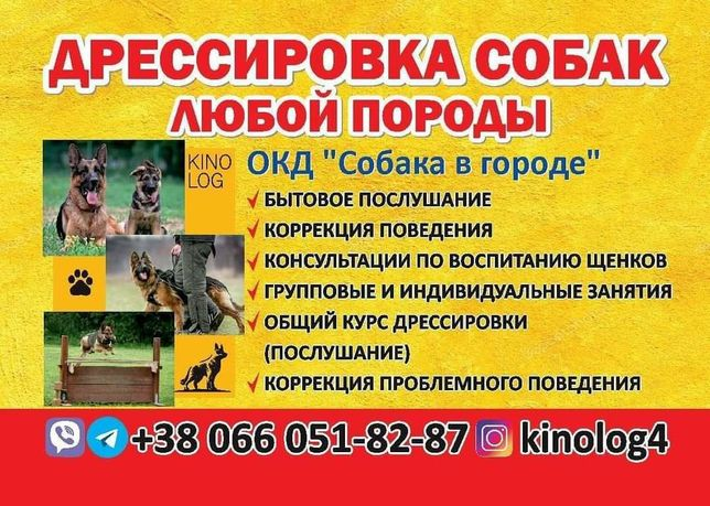 Дрессировки собак Воспитание (Выгул собак)Кинолог