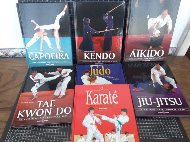 Artes Marciais, judô, Capoeira, Jiu-Jitsu, kendo, Aikido, karaté, novo