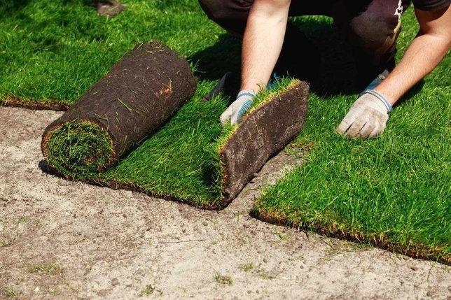 Рулонный газон с Гарантией + Автополив газона - Живая трава с поля