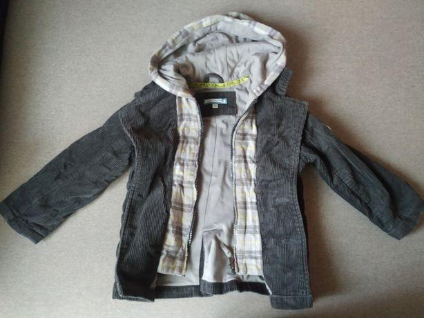 Курточки вітровки на хлопчика