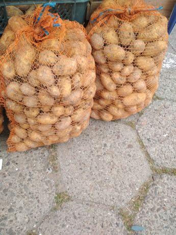 Ziemniaki Jadalne ( Gala, Vineta, Bellarosa, Red Sonia, Monika, Denar)