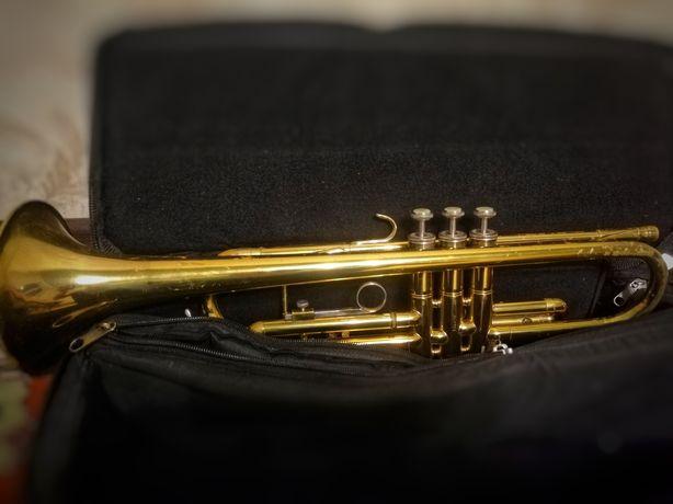 Труба Holton t-602