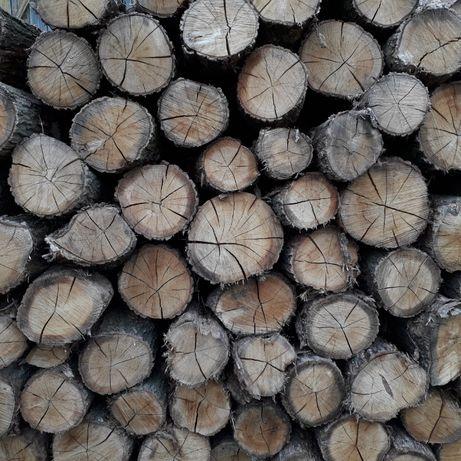 Drewno kominkowe i opałowe dębowe 4-letnie suche