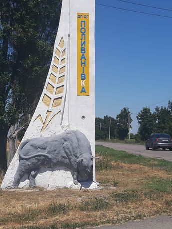 Продам дом и 0.8 га земли в Районе Поливановки