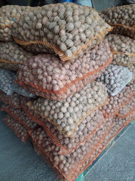 Ziemniaki odpadowe 0.25gr.