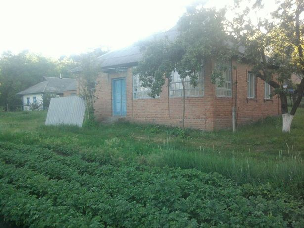 Продам будинок в мальовничому селі Кунцеве.Новосанжарський район.