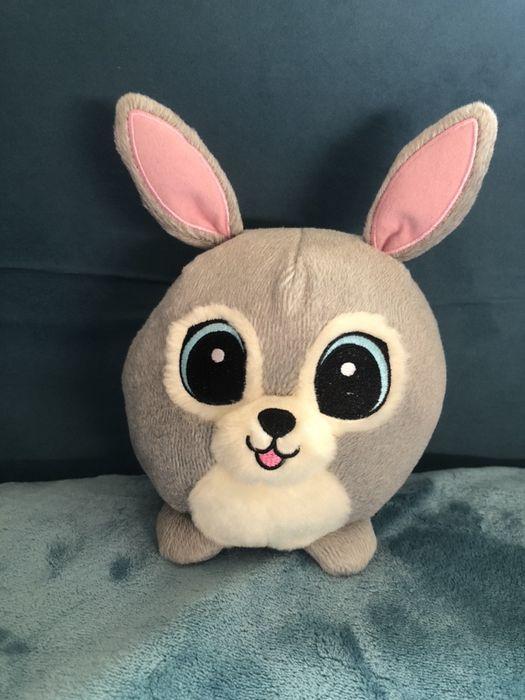 Słodziak królik Łańcut - image 1