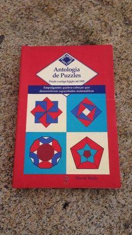 """Livro """"Antologia de Puzzles """"de David Wells"""