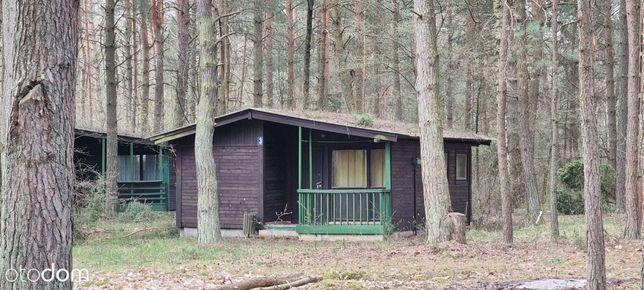 8 domków na działce 1 ha z warunkami zabudowy