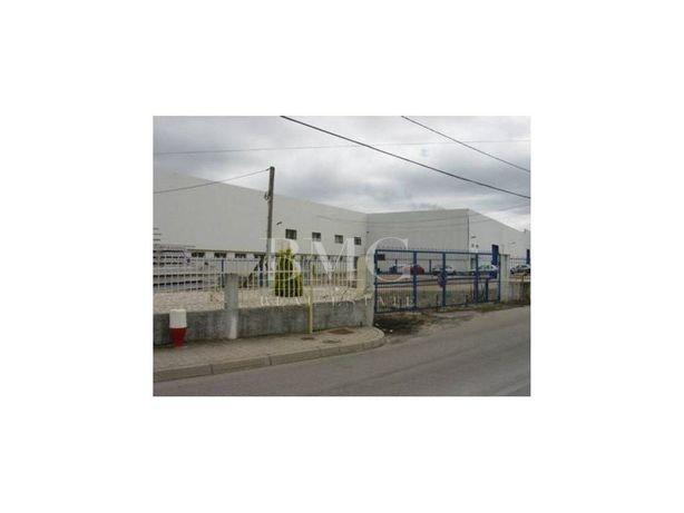 Armazém para logística ou industria - Oliveira do Bairro