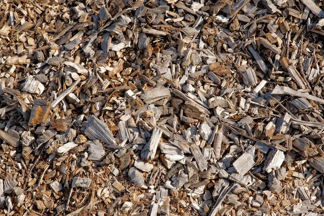 Kompost z zrębków