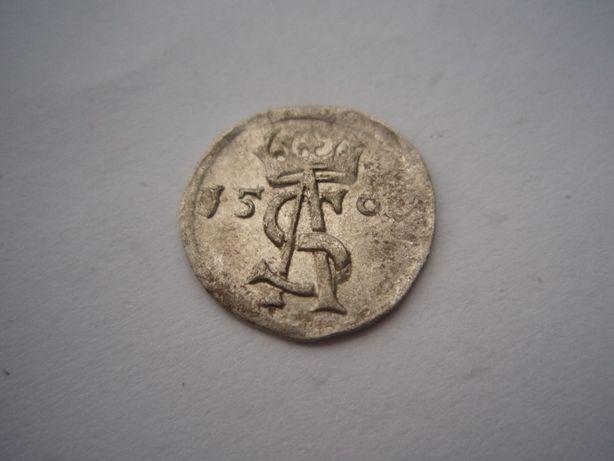 Dwudenar 156?, Zygmunt II August, Wilno (b)