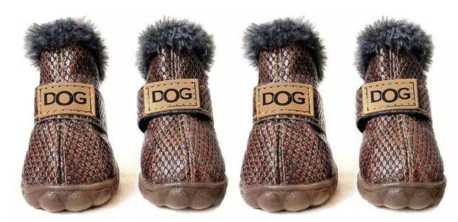 Ботиночки для собак