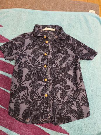 Koszula chłopięca hm 98 104