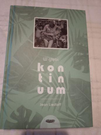 Książka W głębi kontinuum