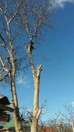 Зрізання дерев,у важкодоступних місцях,порізка дров.