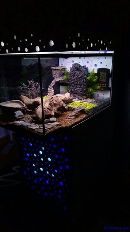 Terrario com movel led