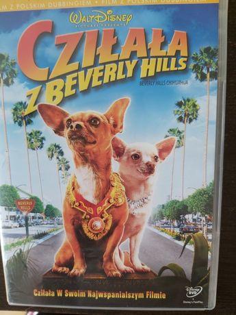 Cziłała z Beverly Hills DVD