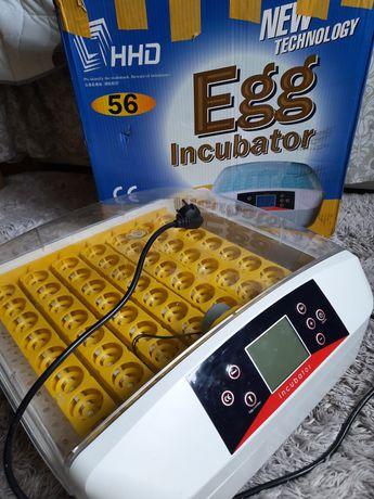 Inkubator do wylęgania drobiu